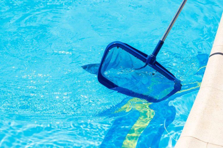 Backyard Garden Swimming Pool Cleaning Closeup. Taking Care of P